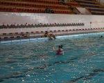 Чемпионат края по синхронному плаванию