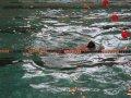 Магаданский пловец Антон Панферов на чемпионате Дальнего Востока установил региональный рекорд
