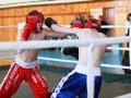 Кикбоксеры Приморья сразились на ринге
