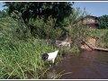 Купание в открытых водоемах в Хабаровском крае запрещено