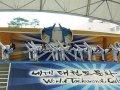 На всемирном фестивале восточных единоборств «Korea Classik Open» спортсменам из Приморья публика аплодировала стоя