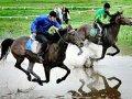 Зейская конница «нарубила» на соревнованиях в Приморье 260 тысяч рублей