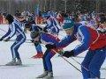 В Амурской области на одну спортивную федерацию стало больше