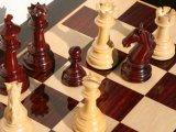 Приморцы неплохо стартовали на дальневосточном шахматном турнире