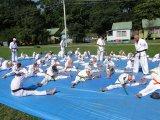 Спортсмены федерации джиу-джитсу проводят лето весело и с пользой. Фоторепортаж