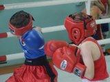 Клуб «Патриот» приглашает на занятия боксом. Видео