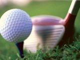 Приморцы осваивают гольф. Видео
