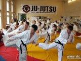 Владивостокские спортсмены джиу-джитсу примут участие в чемпионате России