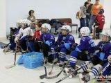 Юные хоккеисты оттачивают свое мастерство на катке с искусственным покрытием. Фото