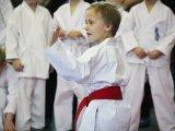 Юные каратисты получили первые в жизни медали. Результаты. Фоторепортаж