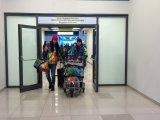 Волонтеры Приморья вернулись с Олимпиады «Сочи-2014»