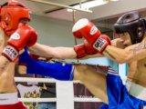 Приморские спортсмены вошли в состав сборной ДФО по кикбоксингу. Фото
