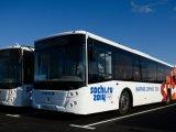 На Паралимпиаде будет задействовано 399 спецавтобусов для перевозки людей с инвалидностью