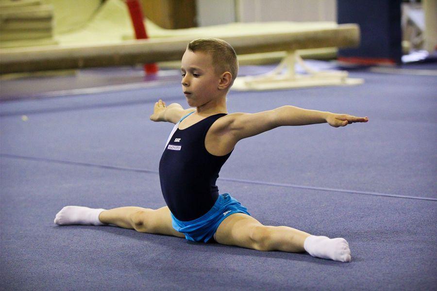 по спортивной гимнастике