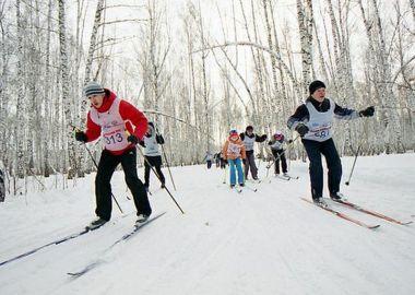 День зимних видов спорта отметят в Артеме