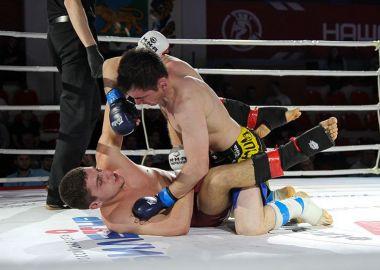 Сильнейшие бойцы сразятся за титулы чемпионов Дальнего Востока по СБЕ ММА
