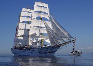 Впервые во Владивостоке одновременно на воду вышло более 140 парусных судов