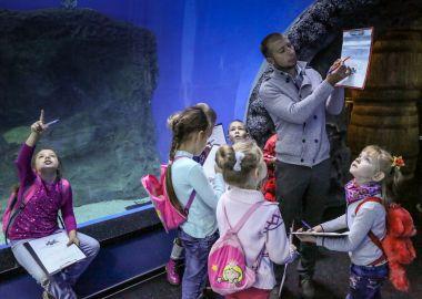 В Приморском океанариуме возобновляют работу «Просветительские среды»