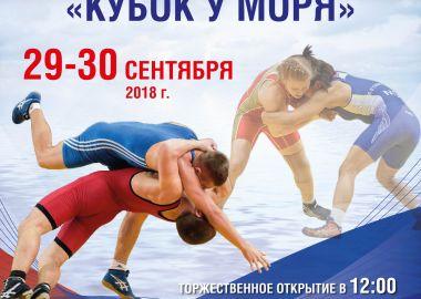 Сильнейшие юные борцы Дальнего Востока сразятся за главные награды во Владивостоке