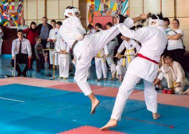 Сильнейшие каратисты ДФО покажут свое мастерство в ката и кумитэ