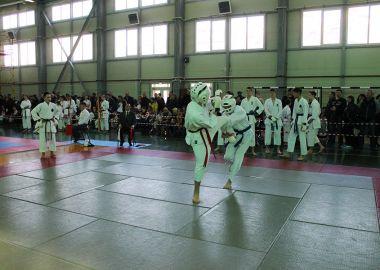 Команда Октябрьского района заняла первое место в открытом турнире по всестилевому каратэ