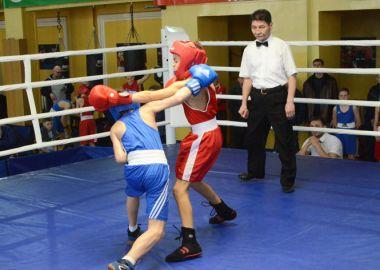 Больше всех медалей краевого первенства по боксу у юных артемовцев