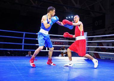 Шесть золотых медалей выиграли приморские боксеры на Всероссийском турнире памяти Виктора Сахарова