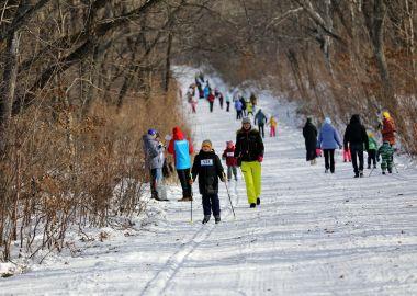 Массовые лыжные старты прошли во Владивостоке